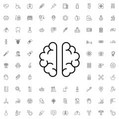 Brain icon. set of outline medicine icons.