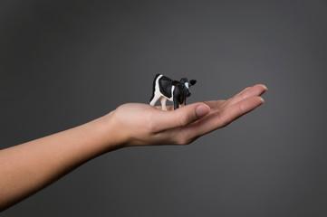 Female hand holding model cow