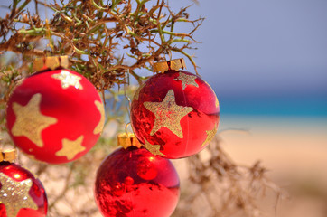 christmas ball on the beach