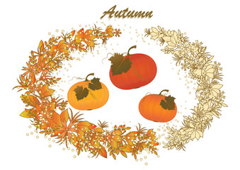 Autumn wreath - leaves - wildflowers - three beautiful pumpkins - isolated on white background - art creative vector