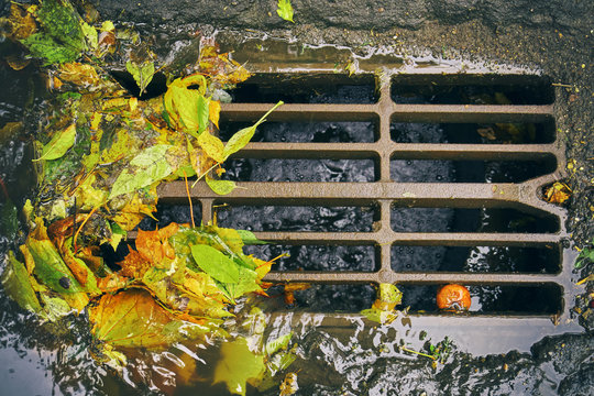 Moscow sewer grate with water flowing into it and fallen leaves and garbage after autumn rain