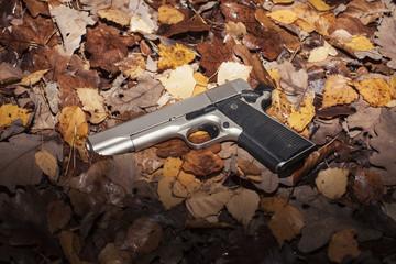 Schnappschuss Pistole auf Herbstlaub