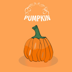 Vector tasty and healthy vegetable pumpkin. Vector element for design of menu, posters and cards to the Day of Thanksgiving and Halloween, stickers.