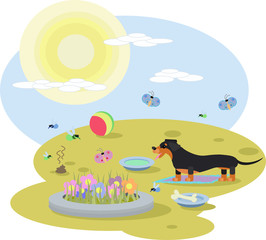 abstract illustration of a Dachshund dog with toys in a meadow on a Sunny day