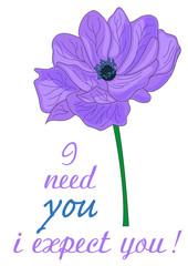 anemone fiore significato inglese