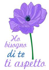 anemone fiore significato