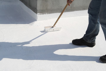 Roof Coating Wall mural