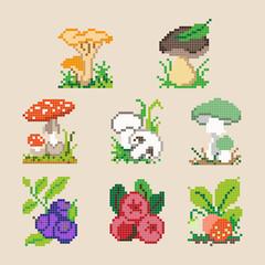 Set of different pixel cartoon berries and mushrooms. Vector illustration