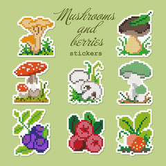 Colorful pixel patch badges with mushrooms and berries. Vector illustration
