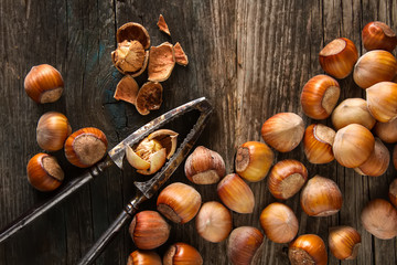 Autumn meal. Hazelnuts are nuts. Dark background.