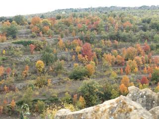 Autumn colors in Maestrazgo, Spain