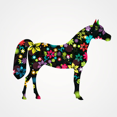 Flower painted horse on white background