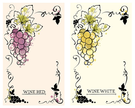 Label for red and white wine -- set /  Vector illustration, floral design element, splash watercolor