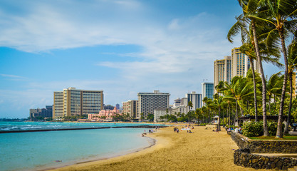 View of Waikiki Beach Skyline on Sunny Day in Honolulu, Hawaii
