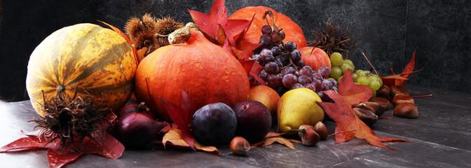 Jesieni żniwa sezonowi owoc i warzywo na szarym tle.