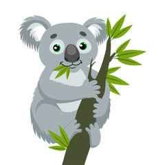 Koala Bear On Wood Branch With Green Leaves. Australian Animal Funniest Koala Sitting On Eucalyptus Branch. Cartoon Vector Illustration. Iconic Marsupials.