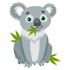Koala Bear On Green Leaves. Australian Animal Funniest Herbivore Sitting On Eucalyptus. Sitting Bear Cartoon Vector Illustration. Iconic Marsupials.