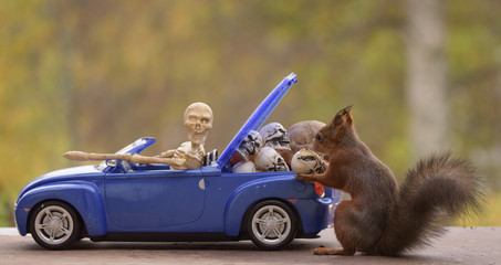 squirrel standing behind  a car with a skeleton