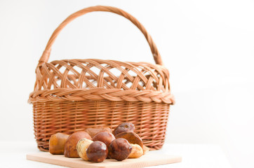 Edible forest mushrooms and wicker basket.
