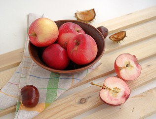 Autumn still life with apples and chestnuts