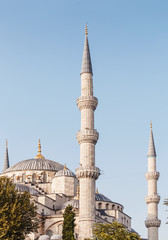 Vertical photo of mosque with minarets