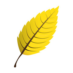 Isolated leaf icon on a white background, Vector illustration