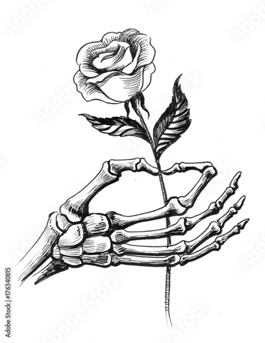 Skeleton hand holding a rose stock photo and royalty for Hand holding a rose drawing