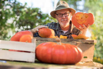 man showing on camera a pumpkin he has just carve for halloween on the table in his garden.