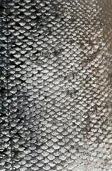 fish skin texture