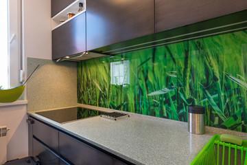 Modern kitchen interior with elements