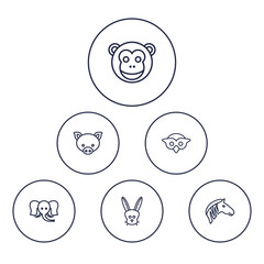 Set Of 6 Animal Outline Icons Set.Collection Of Owl, Monkey, Mammal And Other Elements.