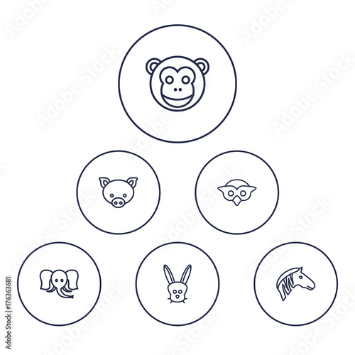 Set Of 6 Animal Outline Icons Set Collection Of Owl, Monkey