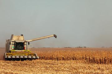 Harvesting the land