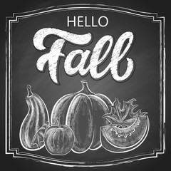 Hello Fall chalk hand lettering, custom calligraphy with maple leaves and pumpkins harvest on black chalkboard background. Vector vintage illustration.