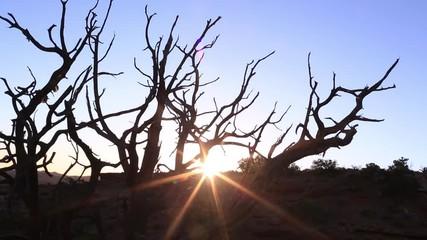 Fototapete - Sunrise at at Hunts Mesa timelapse