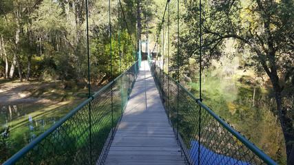 In the natural park of the high Tajo in Guadalajara