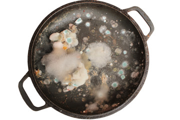 Rotten and moldy food closeup
