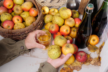 man drinking a glass of cider, bottle and organic apples on the table
