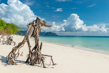 beautiful snag on the beach Poda island in Thailand, a beautiful view of the sea and mountains