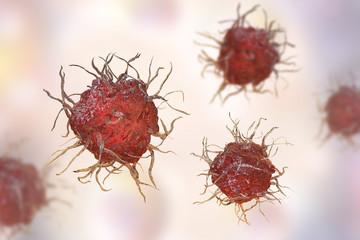 Dendritic cell, antigen-presenting immune cell, 3D illustration