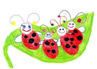 Ladybugs and a plant on white background