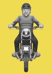 Leopard rides motorcycle. Hand-drawn illustration.