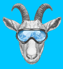 Portrait of Goat with goggles. Hand-drawn illustration.