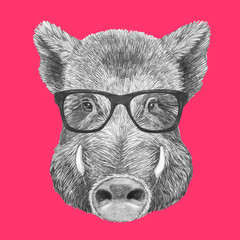 Portrait of Boar with glasses. Hand-drawn illustration.