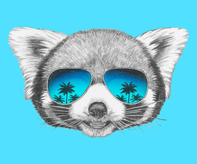 Portrait of Red Panda with sunglasses. Hand-drawn illustration.