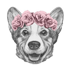 Portrait of Pembroke Welsh Corgi with floral head wreath. Hand-drawn illustration.