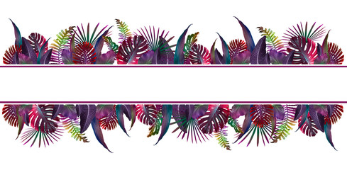 Colorful summer tropical background with exotic palm leaves, free space for your text