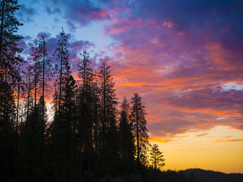 Bass Lake, Yosemite National Park - California, USA