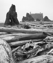 Driftwood and seastacks in black and white