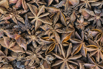 Close-up of star anise fruits and seeds